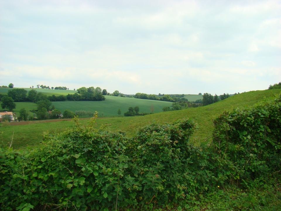 Le gîte est situé dans la Vallée de la Course, rivière qui traverse le Montreuillois